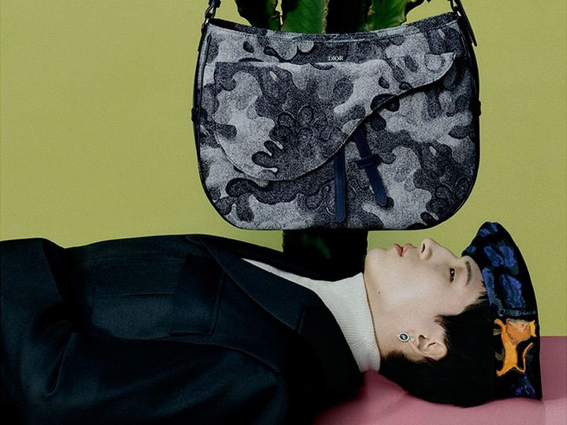 This is the Dior Winter 2021 campaign in collaboration with Peter Doig