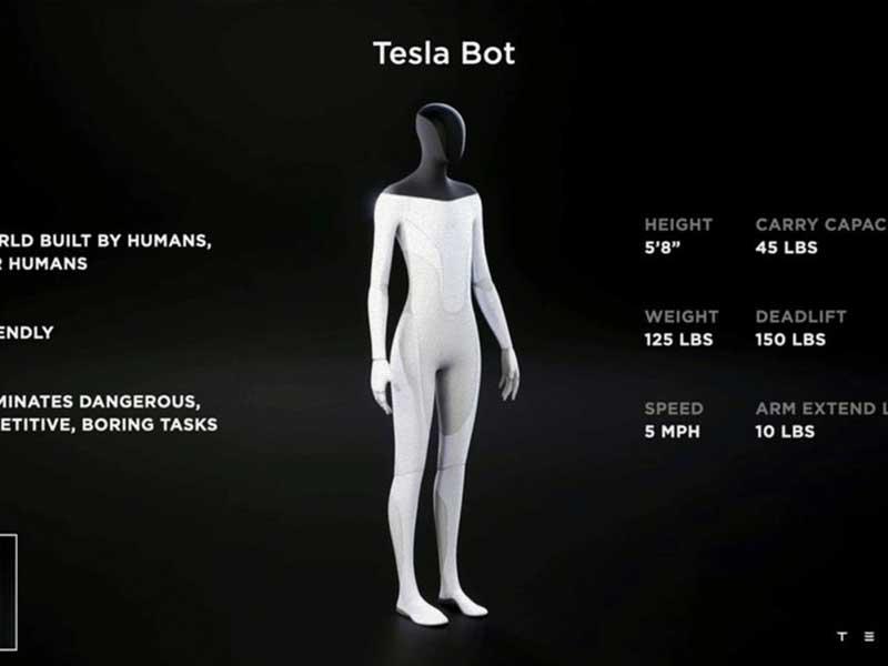 Elon Musk Tesla Bots